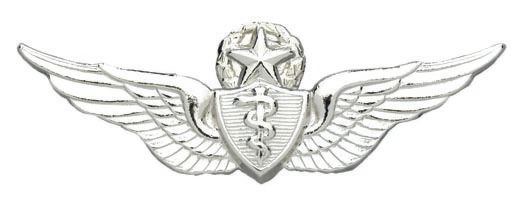 Army Badge Master Flight Surgeon No Shine Northern
