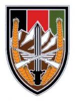 Combat Service ID Badge